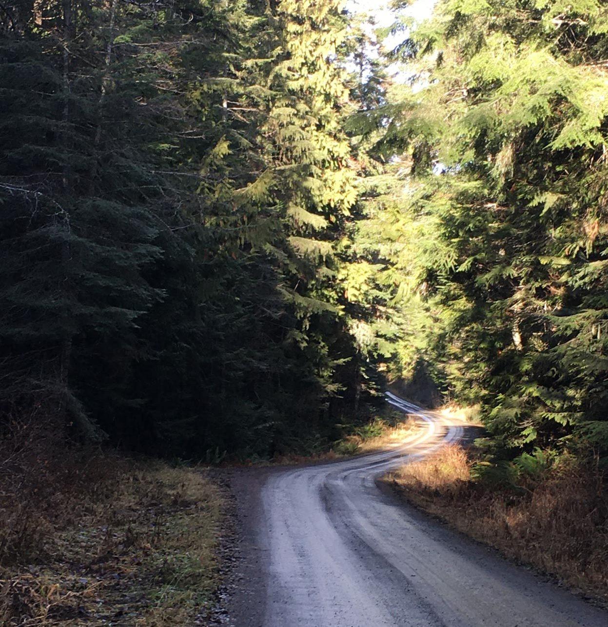 Quilcene Road
